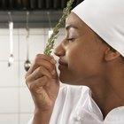 Cosas que hay que saber para convertirse en chef