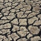 High Magnesium in Soil