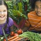 ¿Qué es el pigmento de color de las verduras y las frutas?