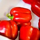 ¿Pueden los pimientos verdes ponerse rojos?