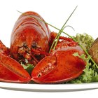 Tryptophan In Lobster
