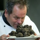 Where to find truffles in the UK