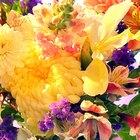Como manter as flores frescas por congelamento