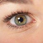 Como cobrir contusões escuras e olhos roxos com maquiagem