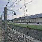 ¿Cuáles fueron algunos de los lugares donde los judíos se escondieron de los nazis?