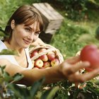 Cómo hacer un traje de manzana