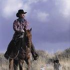Vaqueros e indios en el Viejo Oeste