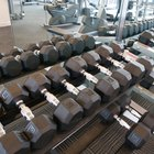 Weight Training With Dumbbells & Exercises for the Back