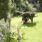 Como eliminar bichos-de-pé e lombrigas do jardim