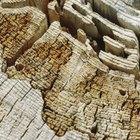 Como reparar madeira apodrecida sem removê-la
