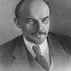 Diferencias entre los mencheviques y los bolcheviques