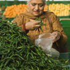 How to Grow Indian Vegetables