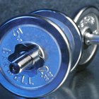 Two Dumbbells Vs. a Barbell