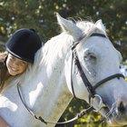 Como fazer petiscos de melaço para um cavalo