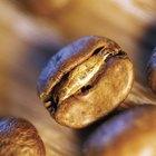 Cómo tostar los granos de cacao sin cáscara