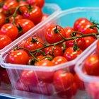 O que cause manchas brancas nos  tomates?