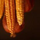 Diferenças entre fubá e farinha de milho