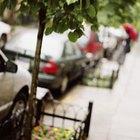 Danos ao revestimento do carro, causados pela seiva das árvores