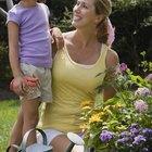 Actividades con plantas para niños del jardín de infancia