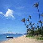 Excursiones en la costa de St. Kitts