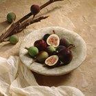 Como fazer figos secos a partir de figos frescos