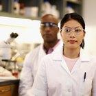 Food Scientist Salary