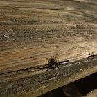 Como preparar um tapume de madeira para ser pintado