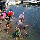 Información sobre la pesca en el lago White, Michigan