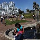 Conheça as principais atrações turísticas de Curitiba