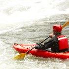 Cosas divertidas para hacer en el parque estatal Blackwater Falls