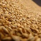 Cómo conservar cereales durante mucho tiempo
