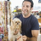 What Are the Dangers of Pet Groomers?