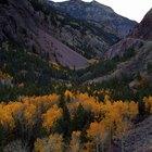Acampando cerca de Ridgway, Colorado