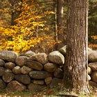 Cómo construir jardineras con piedras autóctonas