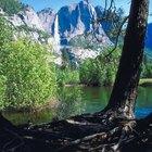 Caminos de montaña en Bass Lake, California