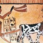 La vida cotidiana de los antiguos agricultores egipcios