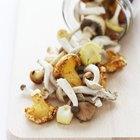 Are Mushrooms a Low-Fiber Food?