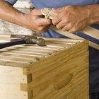 Que tipo de madeira posso usar para construir uma colmeia?