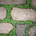 How to lay flagstone on a slope