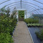How to make a polytunnel