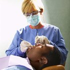 Career Opportunities in Dental Hygiene