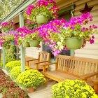 Ideas de paisajismo para un patio delantero pequeño