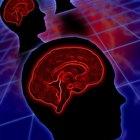 What Nutrients Increase Brain Function?