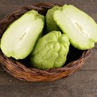Green Chayote fruits, close up photo