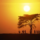 The Life of People in the African Savannah