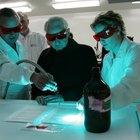 ¿Cómo utilizar la luz ultravioleta para buscar bacterias en tu hogar?