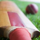 Nine Fitness Components of Cricket