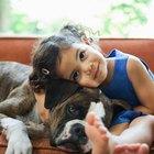 Las 10 mejores razas de perros para la familia