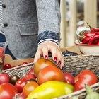 7 alimentos de verano sencillos y fáciles de conservar