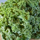 Broccoli rich in vitamins and minerals